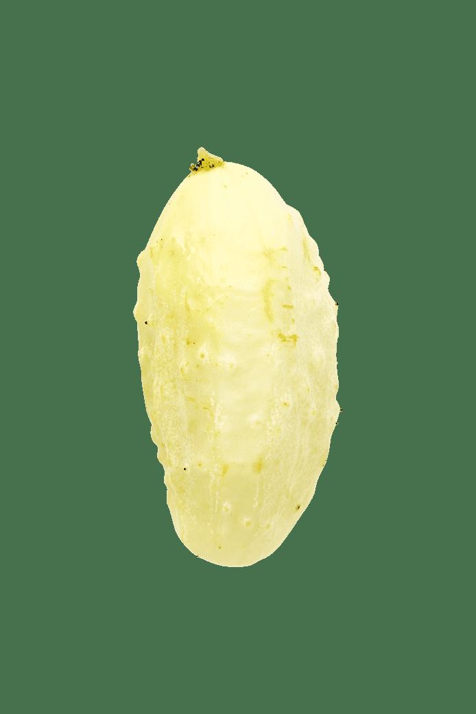 Agurk (Miniature White)