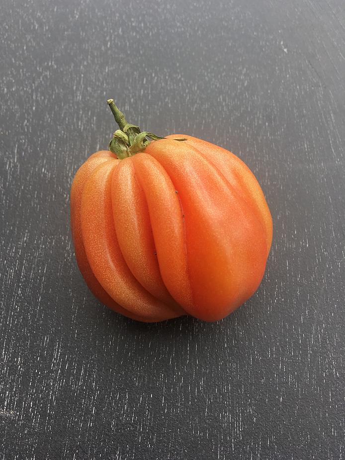 Heart of Oxen-tomat