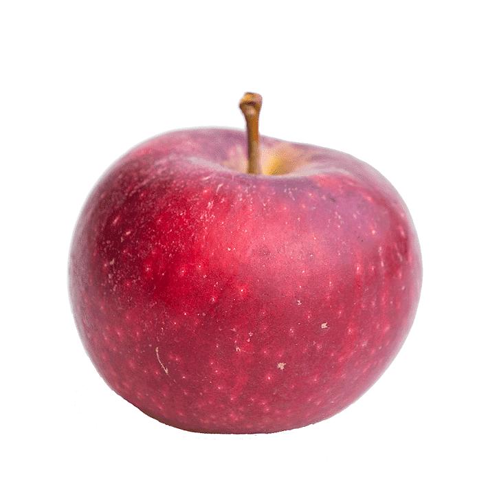 Äpple (Ingrid Marie)