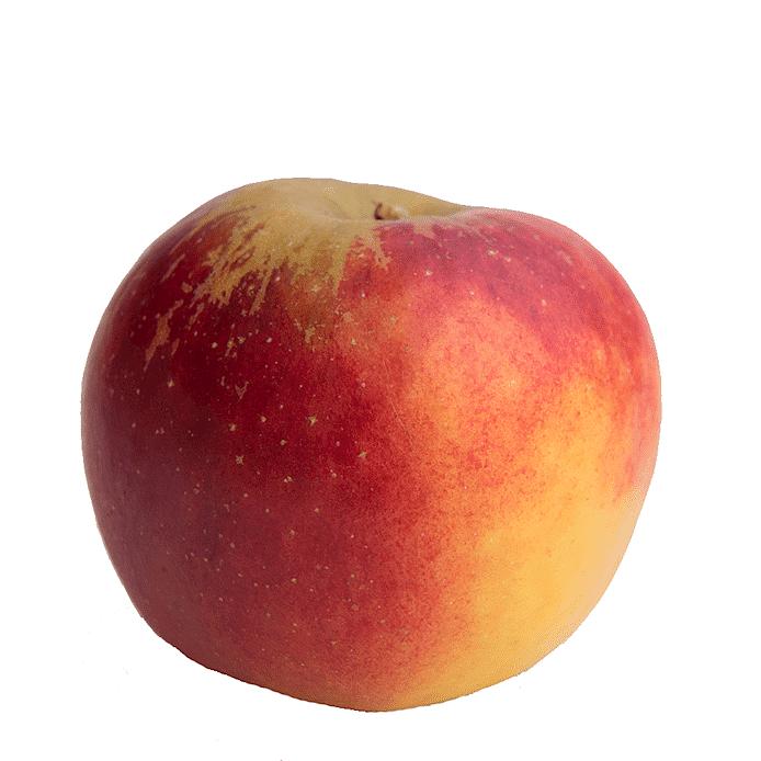 Äpple (Rajka)