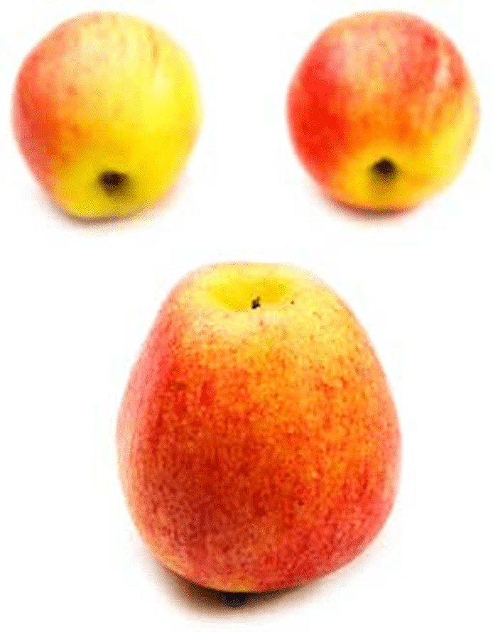 Äpple (Royal Gala)