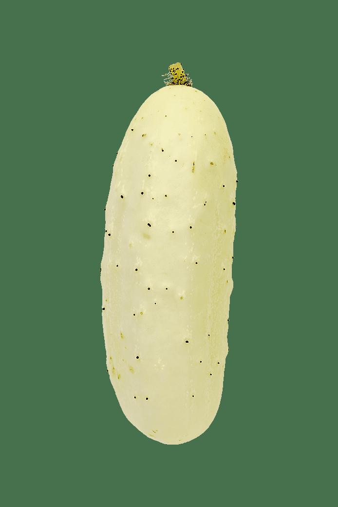 Gurka (Salt 'n' Pepper)