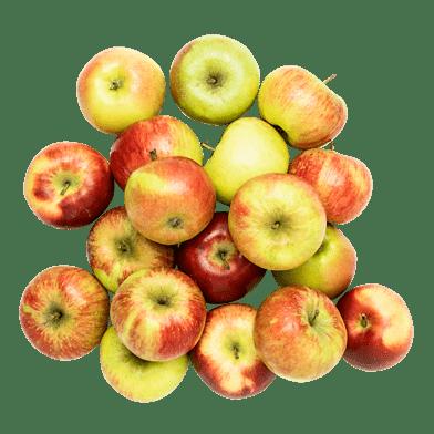 Äppellådan