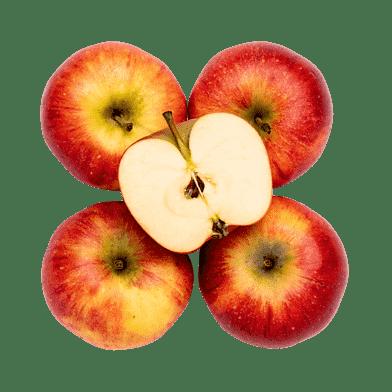 Æbler – Pirouette