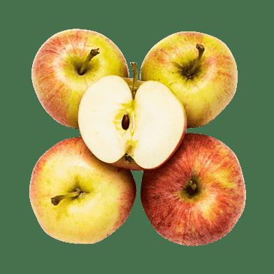 Æbler – Royal Gala
