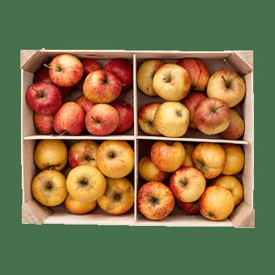 Äppellådan Allesø