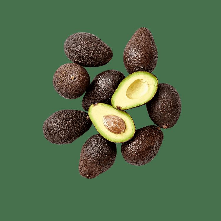Den Lille AvocadoPose