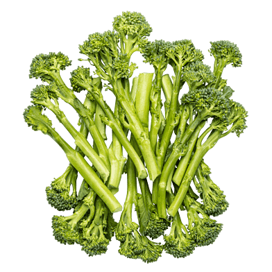 BroccoliniPosen