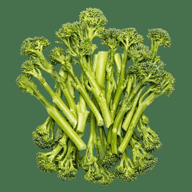 Broccoliskud