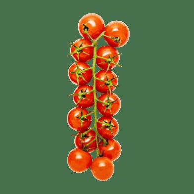 Cherrytomater på gren