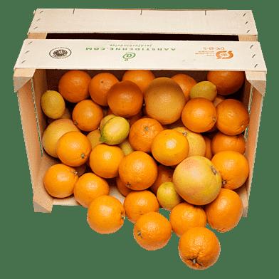 CitrusjuiceLådan
