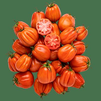 Cœur de Bœuf-tomater