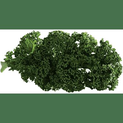 GrønkålsKassen