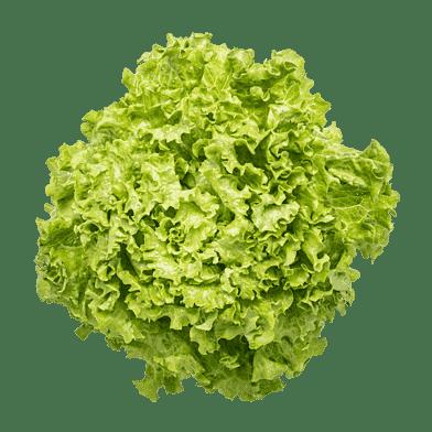 Grøn egebladssalat