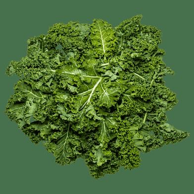 Grönkålspåsen