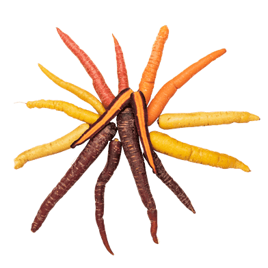 Gulerødder, farvede