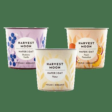 Harvest Moon – Havre