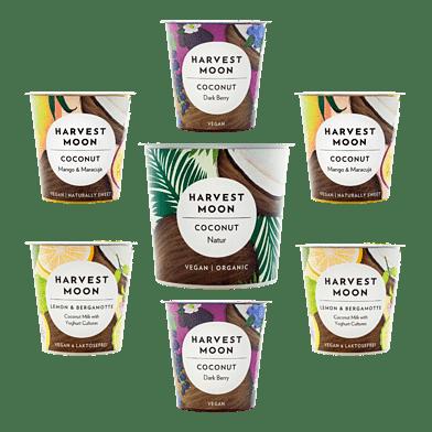 Harvest Moon – Kokos