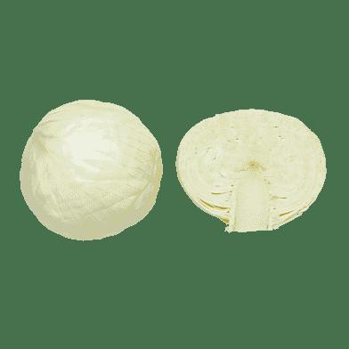 Hvidkål