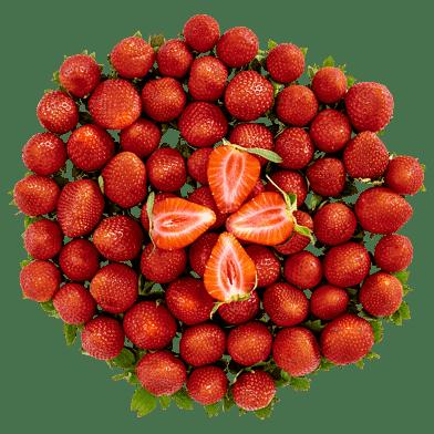 JordbærKassen