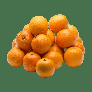 KlementinPosen