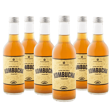 Kombucha – Ingefær