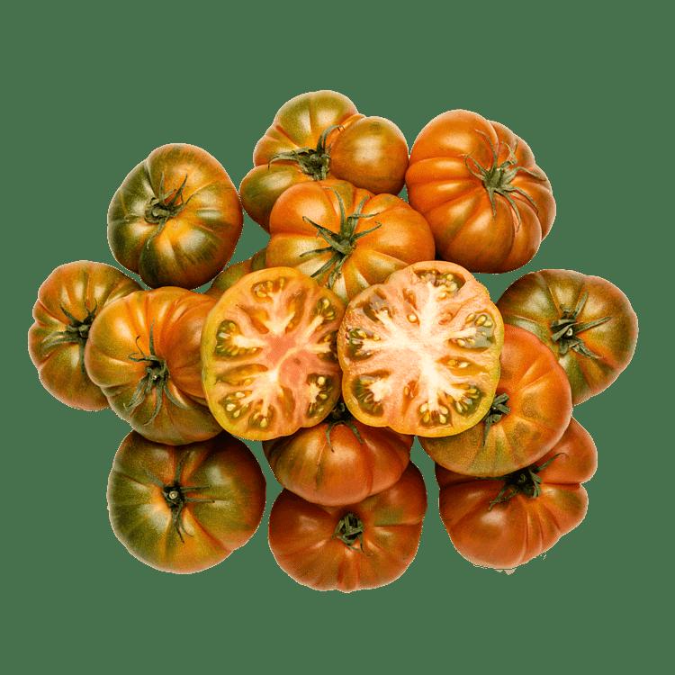 Marmalindo TomatKassen