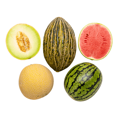 MelonKassen