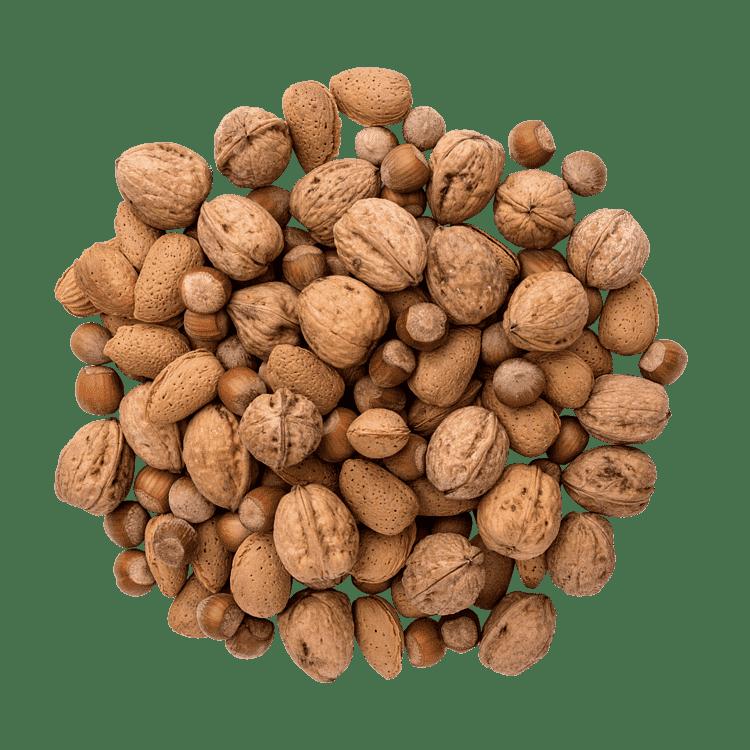Nötter med skal