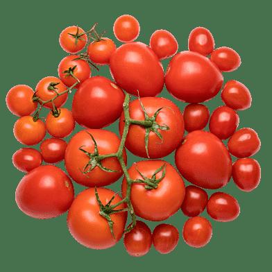 Pacos Tomatlåda