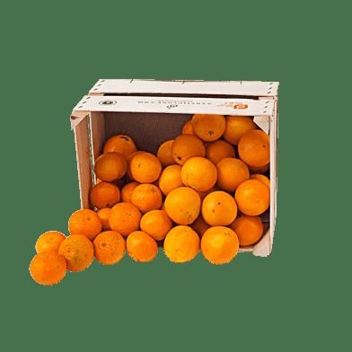 PresSelv-Appelsiner