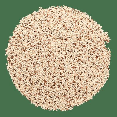 Quinoa, blandet