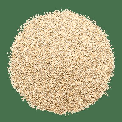 Quinoa, hvid
