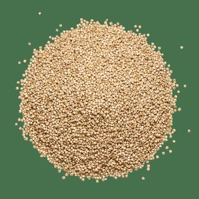 QuinoaPosen