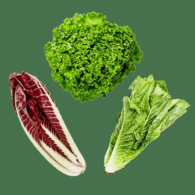 SalatKassen