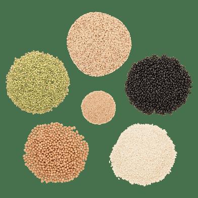Smaklådan Gröna Proteiner