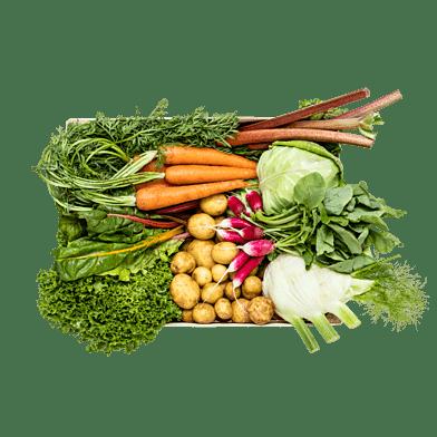 SommergrøntKassen