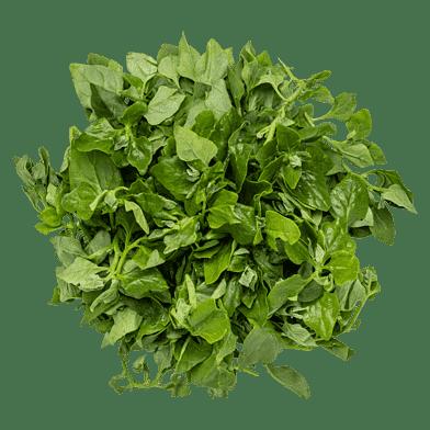 New zealand-spinat i bundt