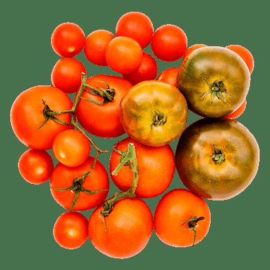 Tomatlådan