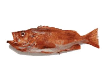 Bagt rødfisk med soja