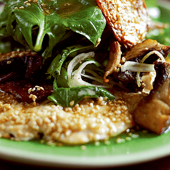 Carpaccio af kylling med sesamsmør, feldsalat og svampe