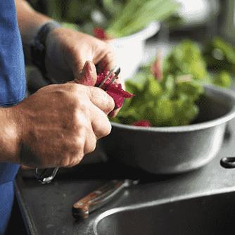 Koteletter og rodfrugtmos med skyr, grønne bønner og stegte svampe