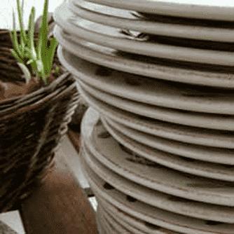 Oksebacon med sellerikompot og skorzonerrødder