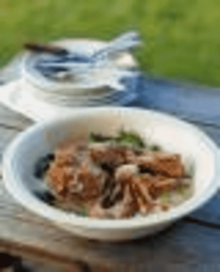 Lammbog i kokosmjölk med spenat och lök