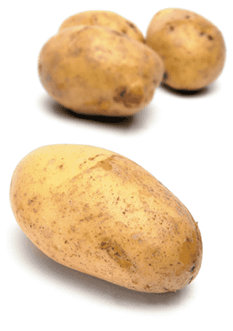 Potatis- och sparrissallad med citroncreme