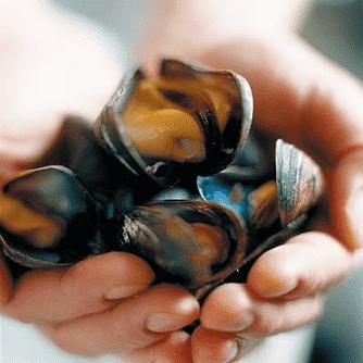 Pyttipanna på jordärtskocka, äpplen och musslor